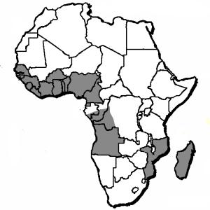 afrika-umriss-karte-19360